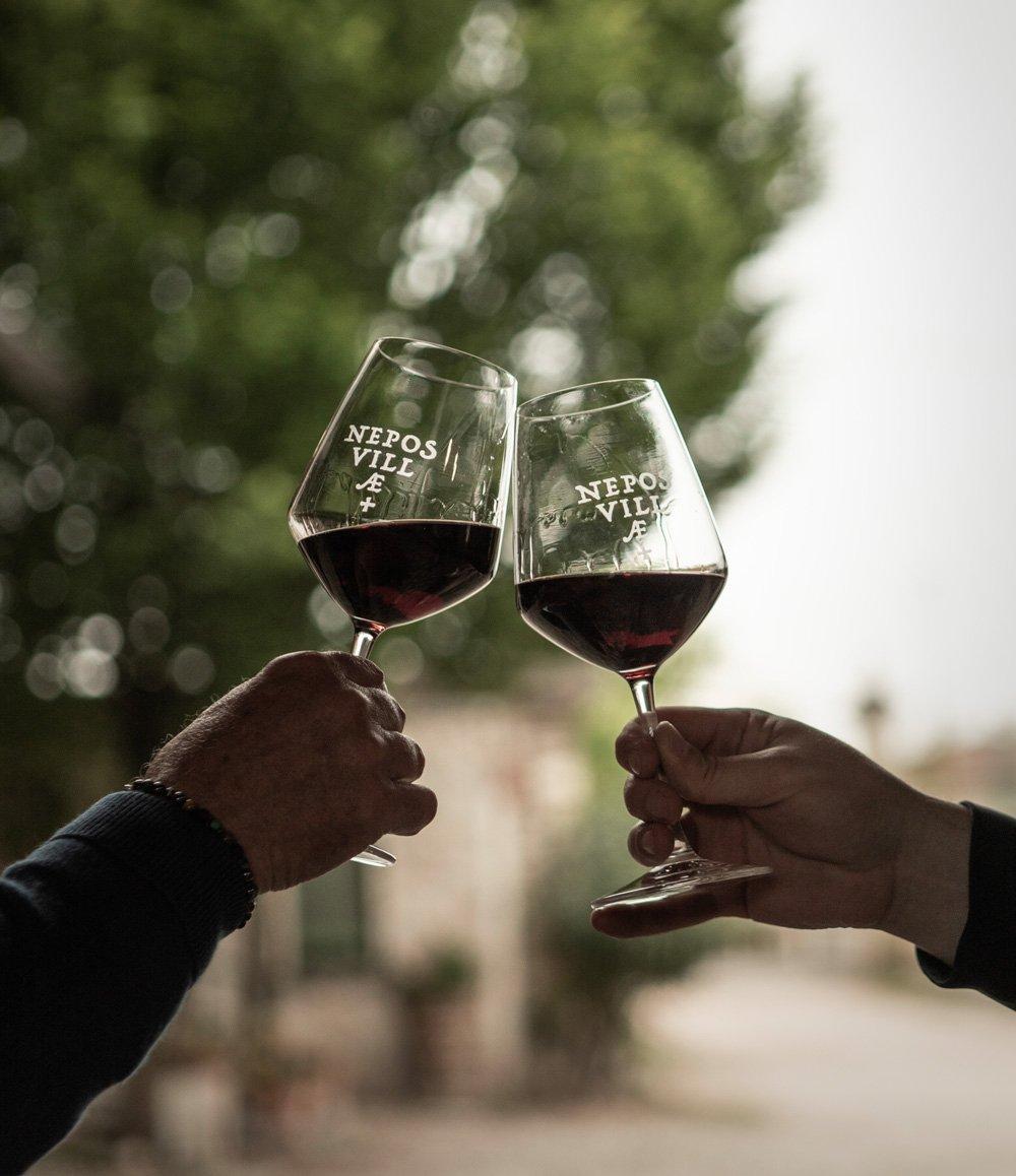 Degustazione vino Valpolicella