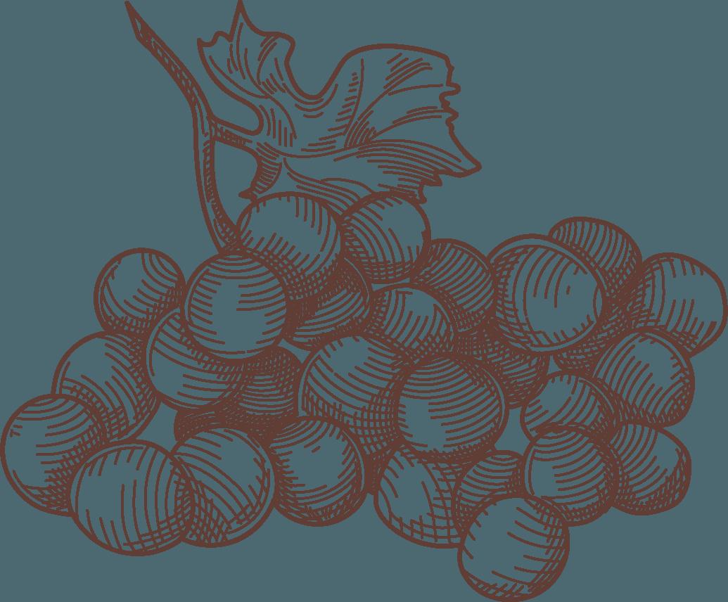 Icona grappolo uva Nepos Villae
